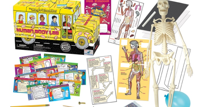 Magic School Bus Human Body lab from The Young Scientists Club