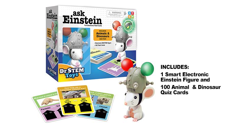 Dr-STEM-Toys-as-Einstein